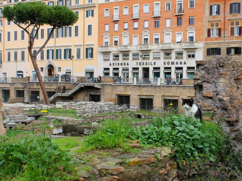 Ruine romane Largo di Torre Argentina