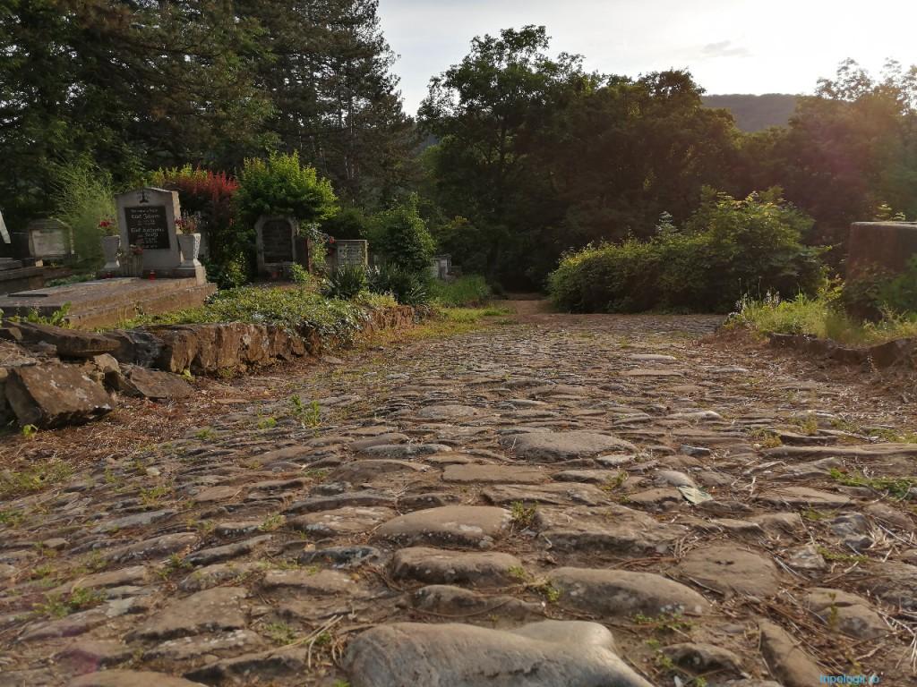 Alee pietruită în cimitirul evanghelic din Sighişoara
